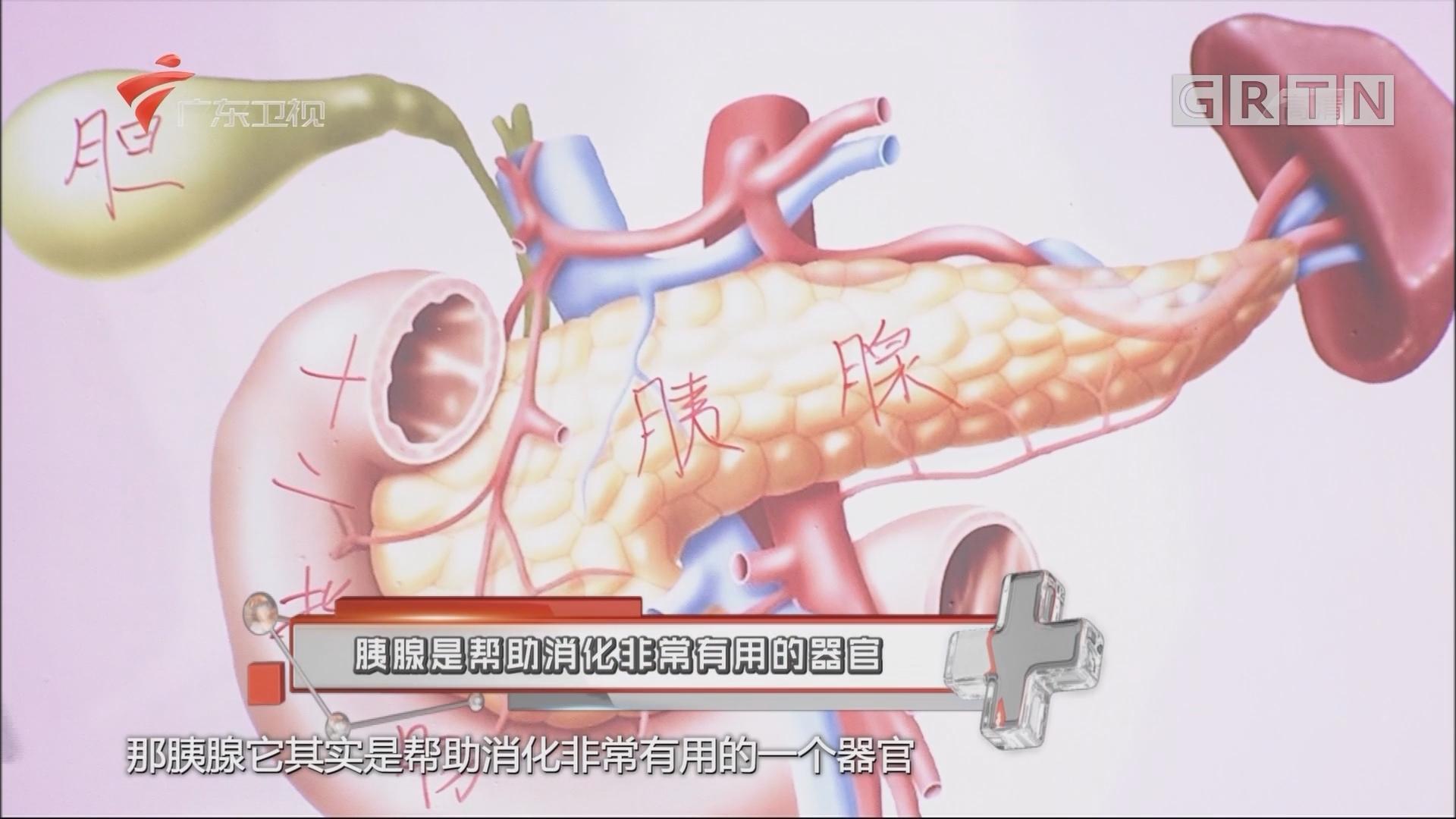 [HD][2018-05-25]健康有道:胰腺是帮助消化非常有用的器官