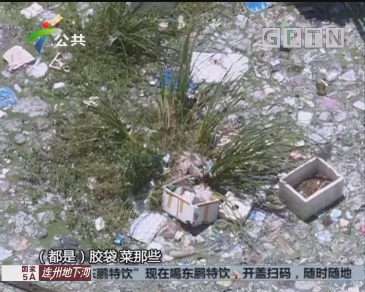 街坊求助:鱼塘堆满垃圾 村民深受困扰