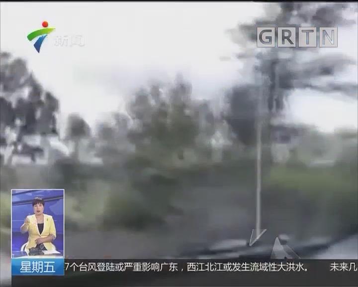 夏威夷基拉韦厄火山猛烈喷发