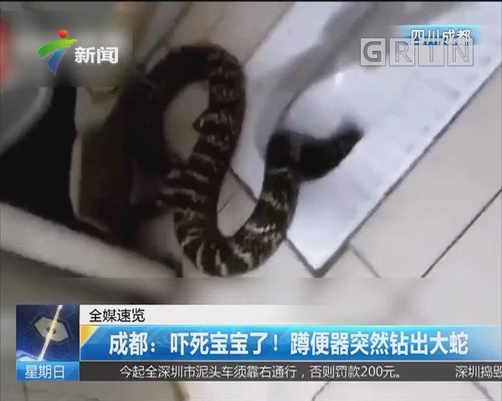 成都:吓死宝宝了!蹲便器突然钻出大蛇