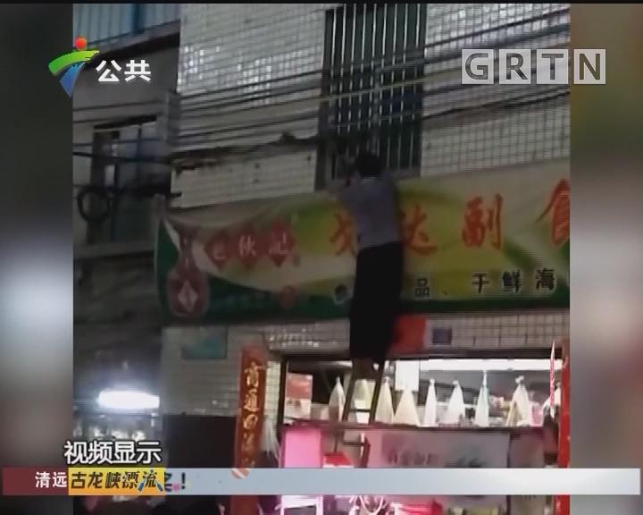 江门:蛇爬上店铺招牌 街坊徒手抓获