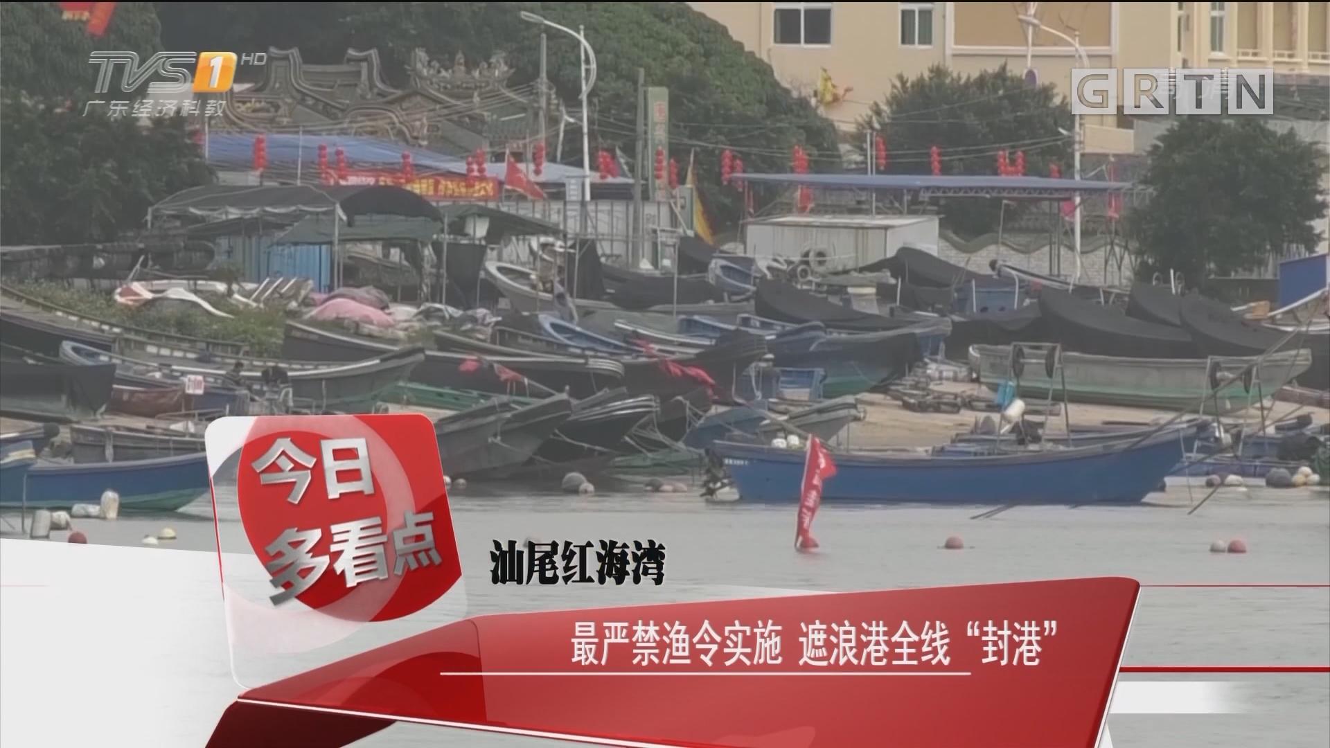 """汕尾红海湾:最严禁渔令实施 遮浪港全线""""封港"""""""