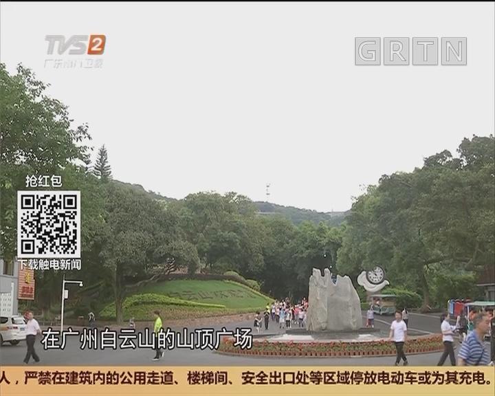 食品安全:广州白云山白毒伞蘑菇 剧毒不要采