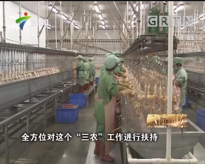 [2018-05-27]权威访谈:广东:举全省之力实施乡村振兴战略