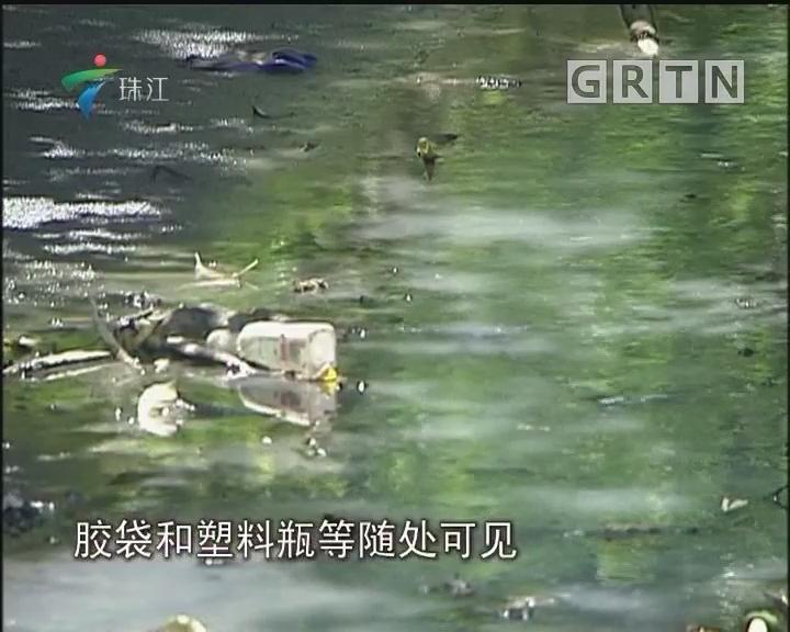 顺德:河涌恶臭难闻扰民 河长办:已纳入综合整治