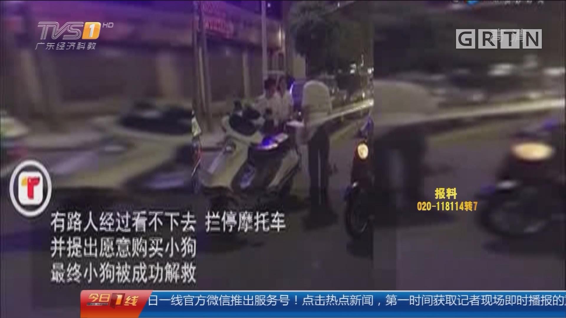 汕头潮阳区:热心路人制止男子驾摩托当街虐狗