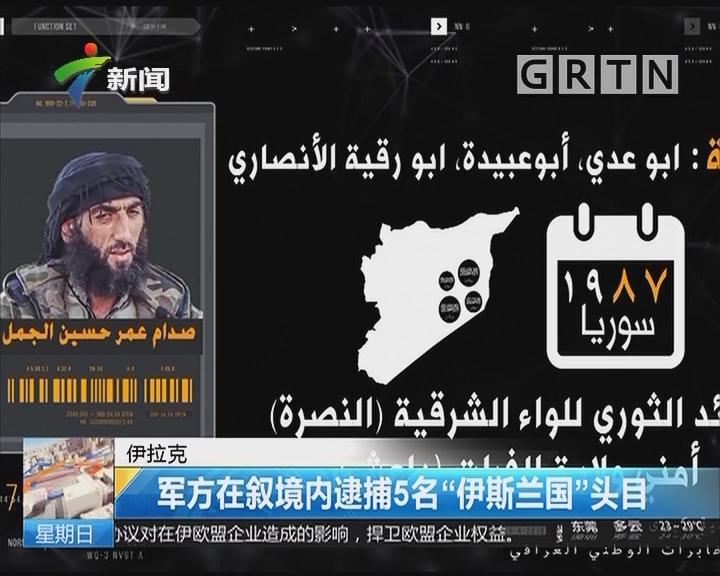 """伊拉克:军方在叙境内逮捕5名""""伊斯兰国""""头目"""