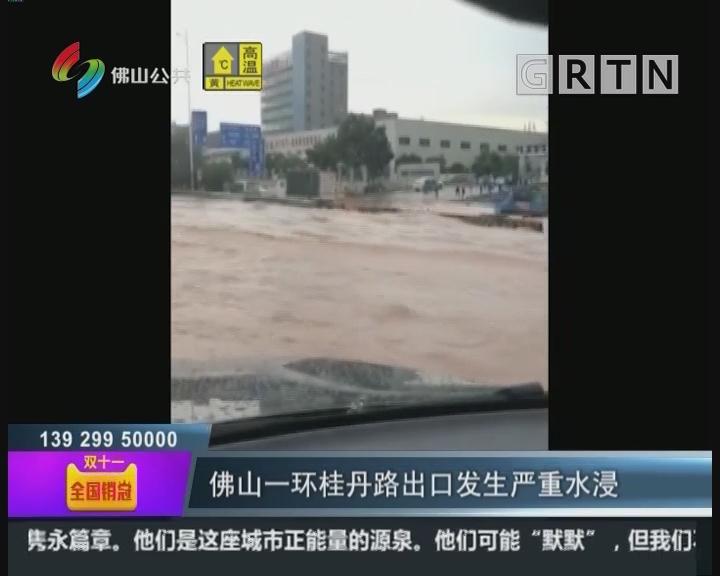 """佛山:暴雨突袭南海狮山 桂丹路车辆""""游船河"""""""