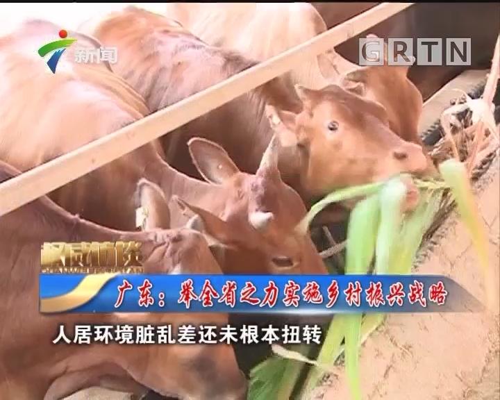 [2018-05-19]权威访谈:广东:举全省之力实施乡村振兴战略
