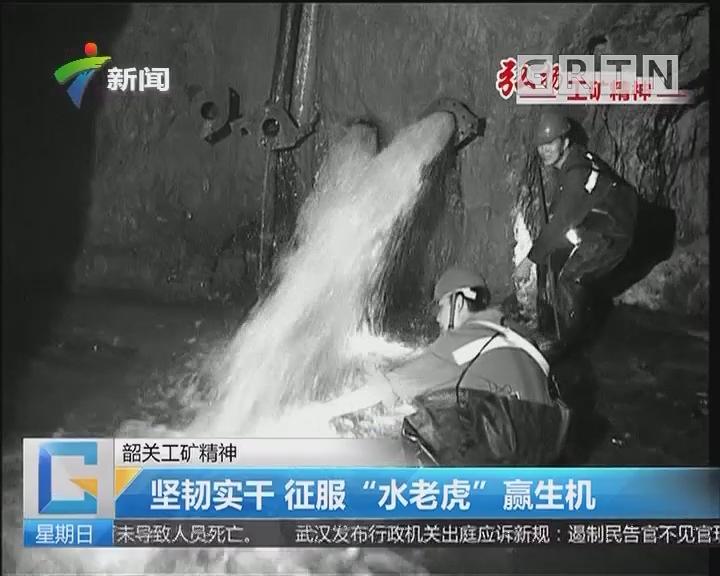"""韶关工矿精神:坚韧实干 征服""""水老虎""""赢生机"""