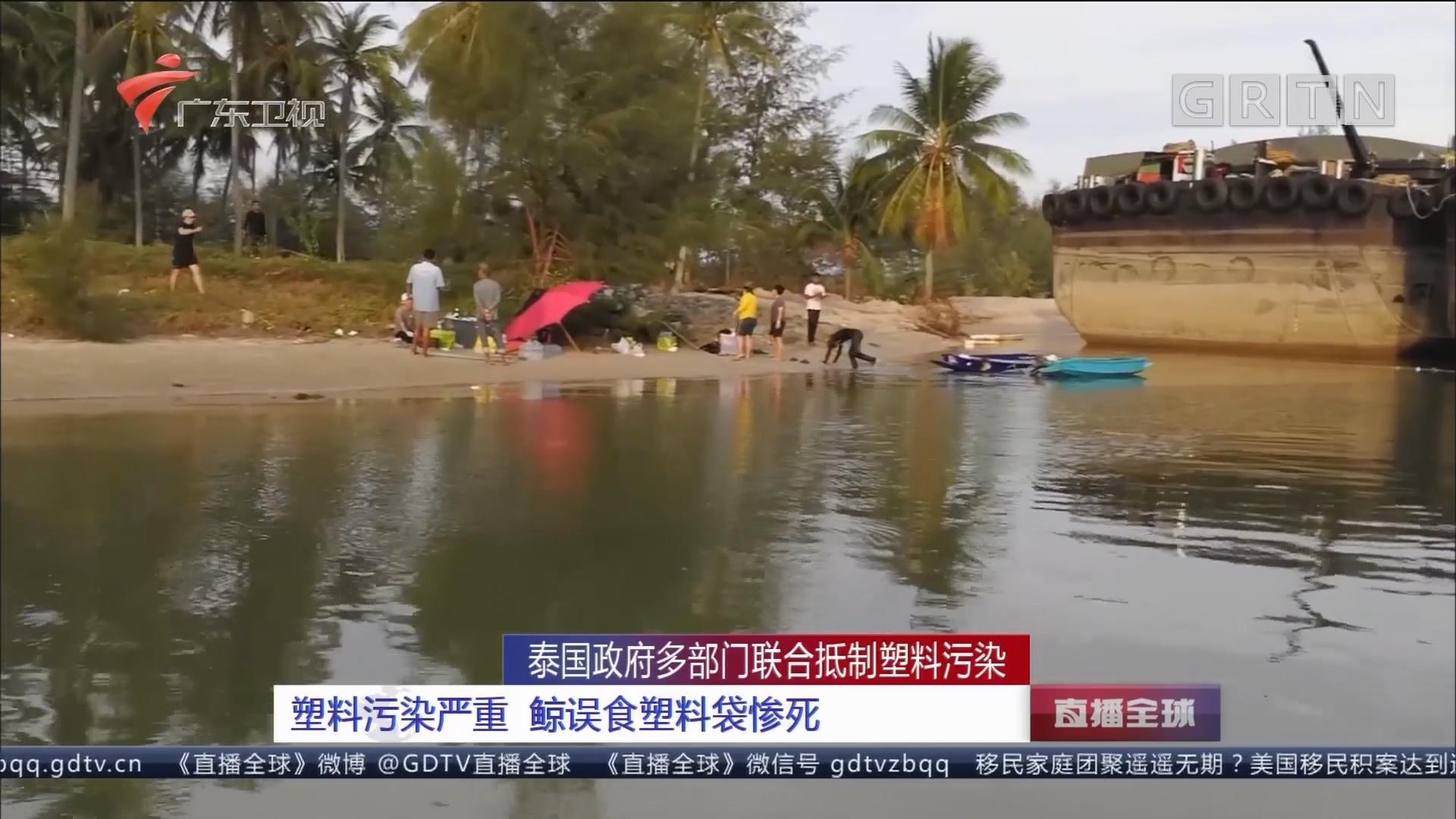 泰国政府多部门联合抵制塑料污染:塑料污染严重 鲸误食塑料袋惨死