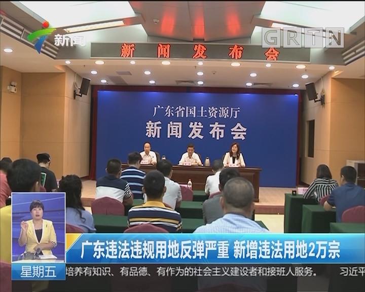 广东违法违规用地反弹严重 新增违法用地2万宗