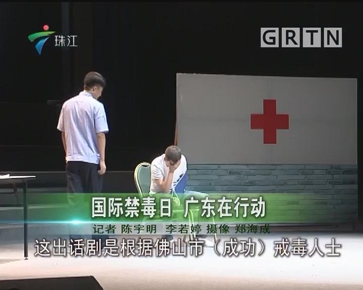国际禁毒日 广东在行动