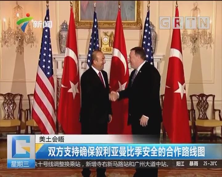 美土会晤:双方支持确保叙利亚曼比季安全的合作路线图