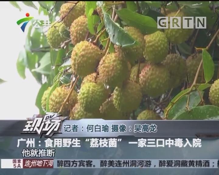 """广州:食用野生""""荔枝菌"""" 一家三口中毒入院"""