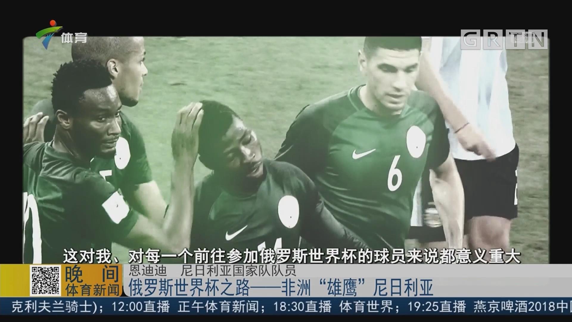 """俄罗斯世界杯之路——非洲""""雄鹰""""尼日利亚"""
