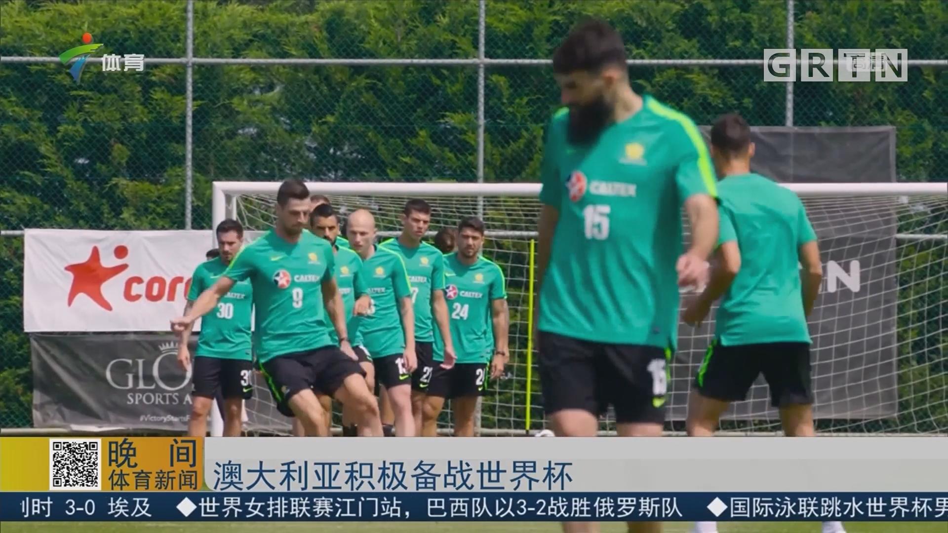 澳大利亚积极备战世界杯
