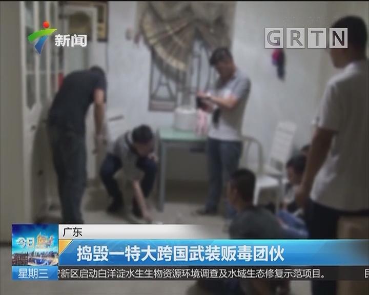 广东:捣毁一特大跨国武装贩毒团伙