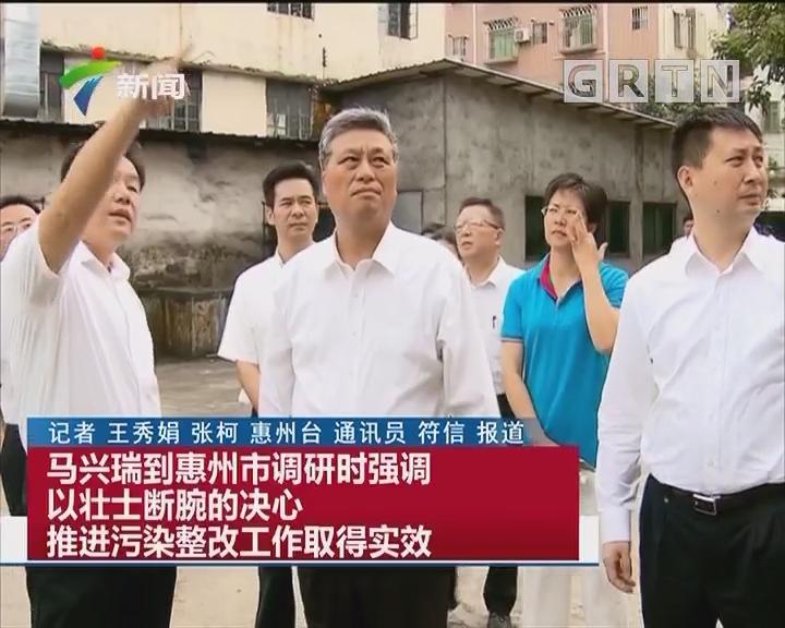马兴瑞到惠州市调研时强调以壮士断腕的决心推进污染整改工作取得实效