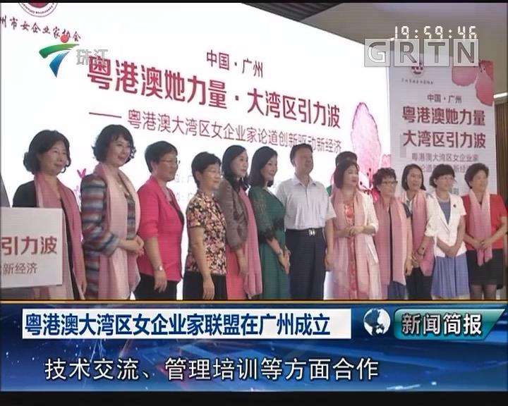 粤港澳大湾区女企业家联盟在广州成立