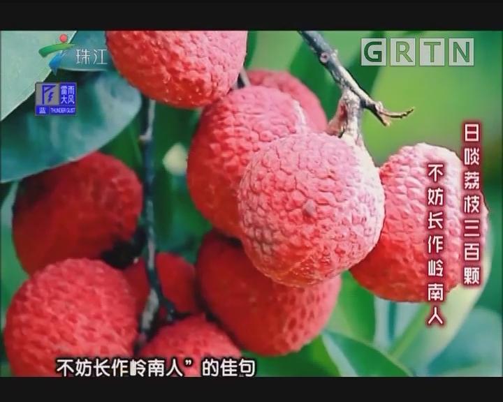 [2018-06-25]摇钱树:蚕沙肥助力荔枝丰产高品