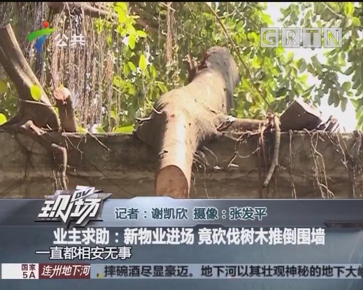 业主求助:新物业进场 竟砍伐树木推倒围墙