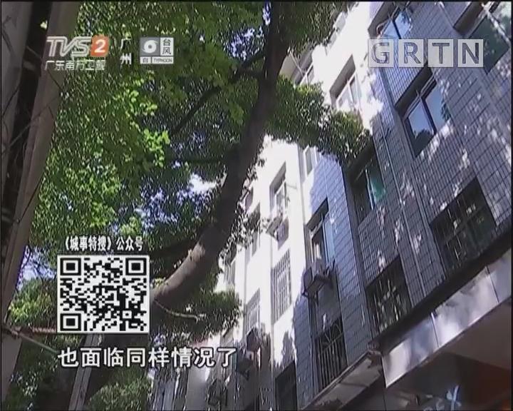 广州竹筋楼:一商局大楼