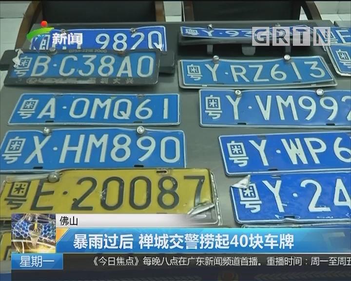 佛山:暴雨过后 禅城交警捞起40块车牌