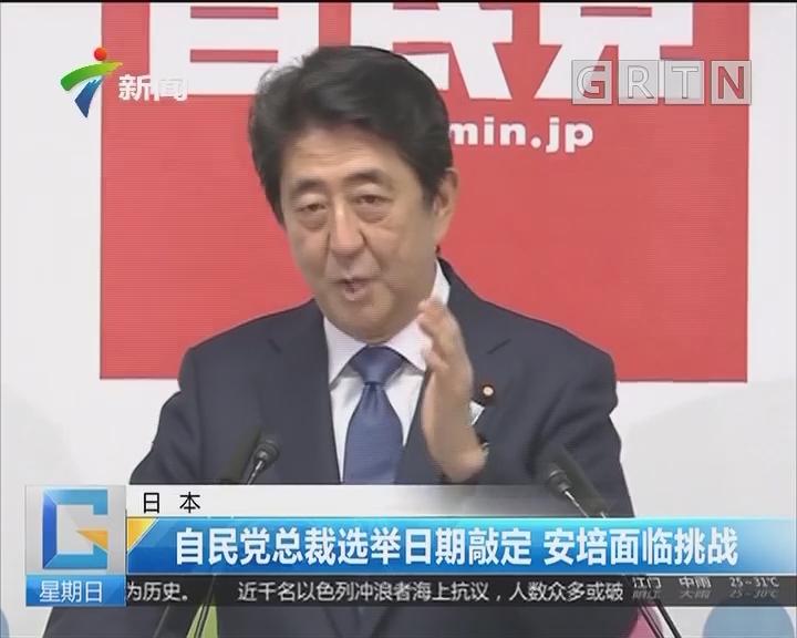 日本:自民党总裁选举日期敲定 安培面临挑战