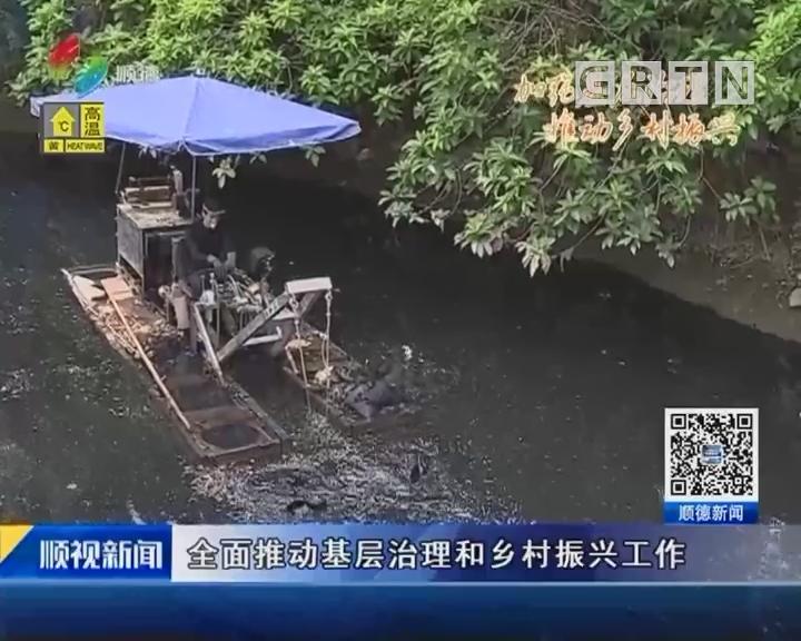 区领导到龙江调研基层治理乡村振兴工作