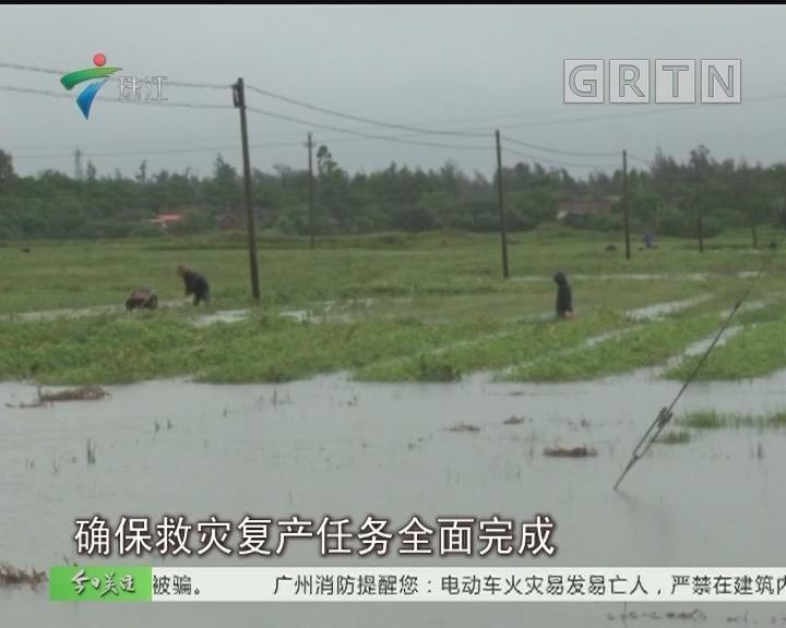 """第四号台风""""艾云尼""""今晨登陆徐闻 降雨明显"""