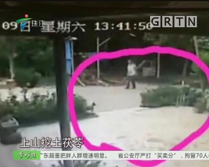 """中山:""""荒野生存"""" 少年失踪9天终获救"""
