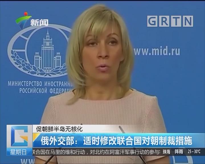 促朝鲜半岛无核化 俄外交部:适时修改联合国对朝制裁措施
