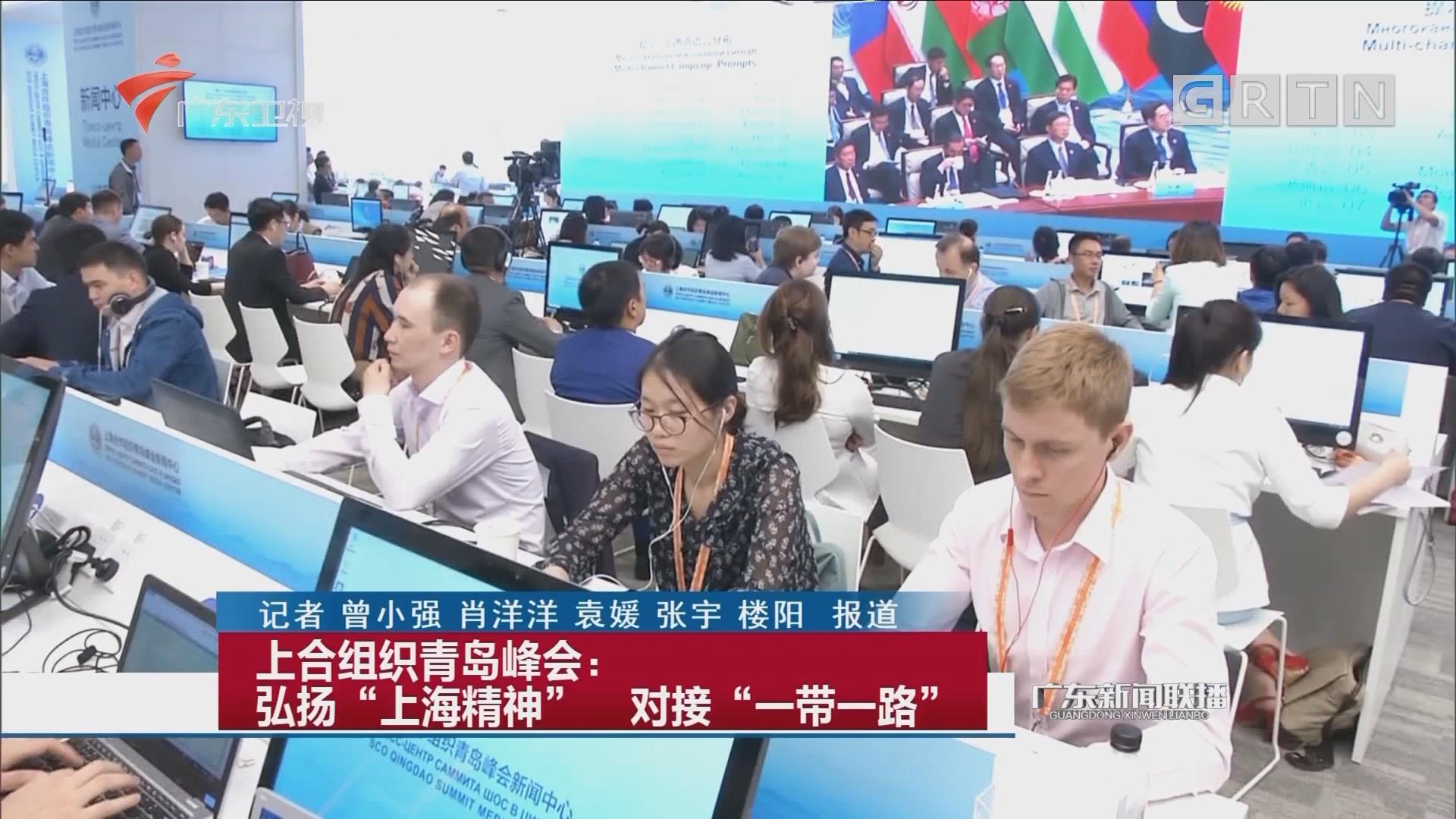 """上合组织青岛峰会:弘扬""""上海精神"""" 对接""""一带一路"""""""