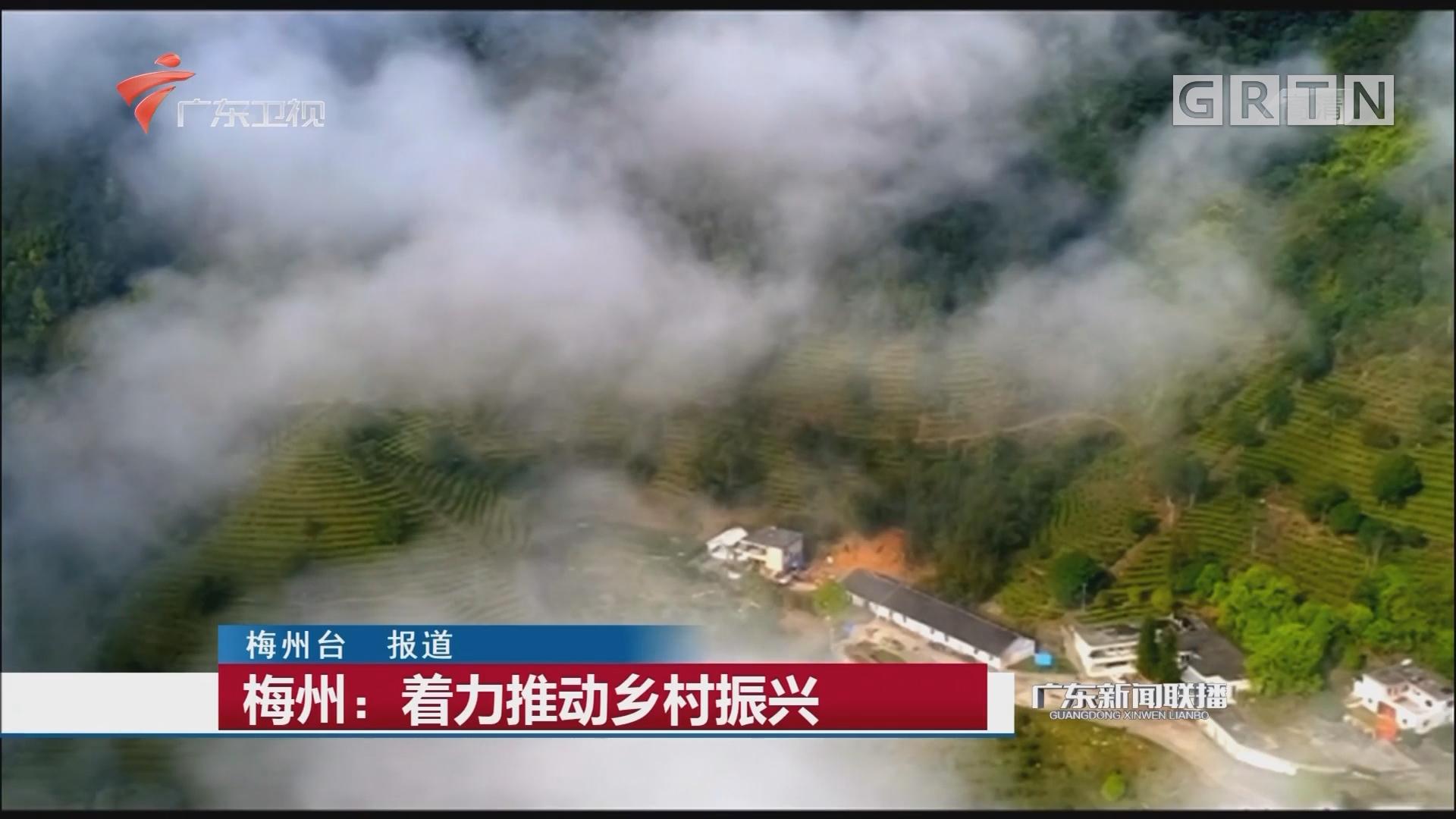 梅州:着力推动乡村振兴