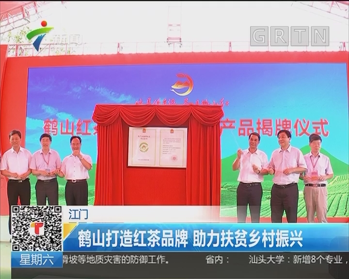 江门:鹤山打造红茶品牌 助力扶贫乡村振兴