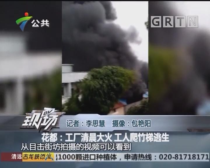 花都:工厂清晨大火 工人爬竹梯逃生