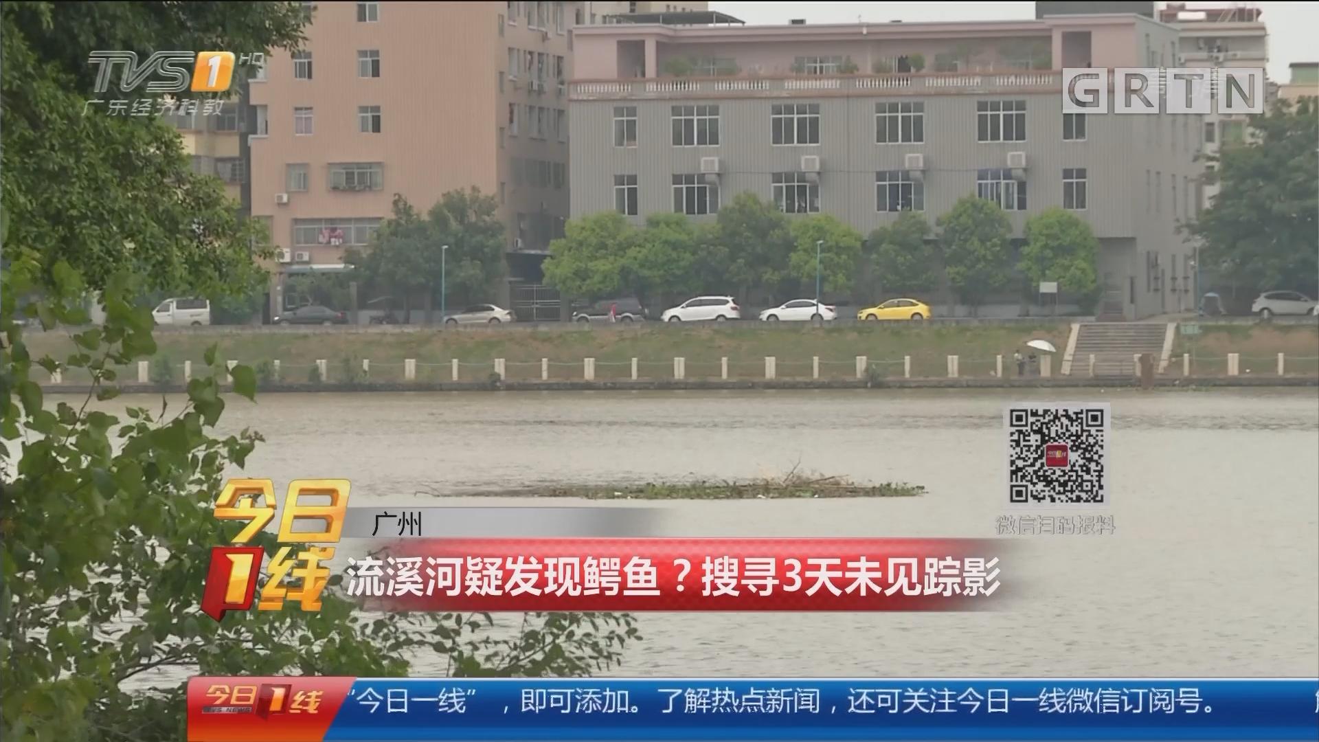 广州:流溪河疑发现鳄鱼?搜寻3天未见踪影