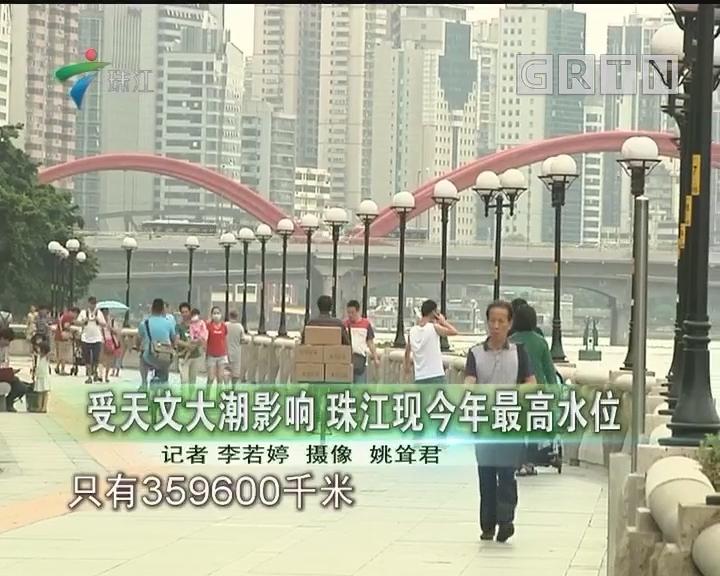 受天文大潮影响 珠江现今年最高水位