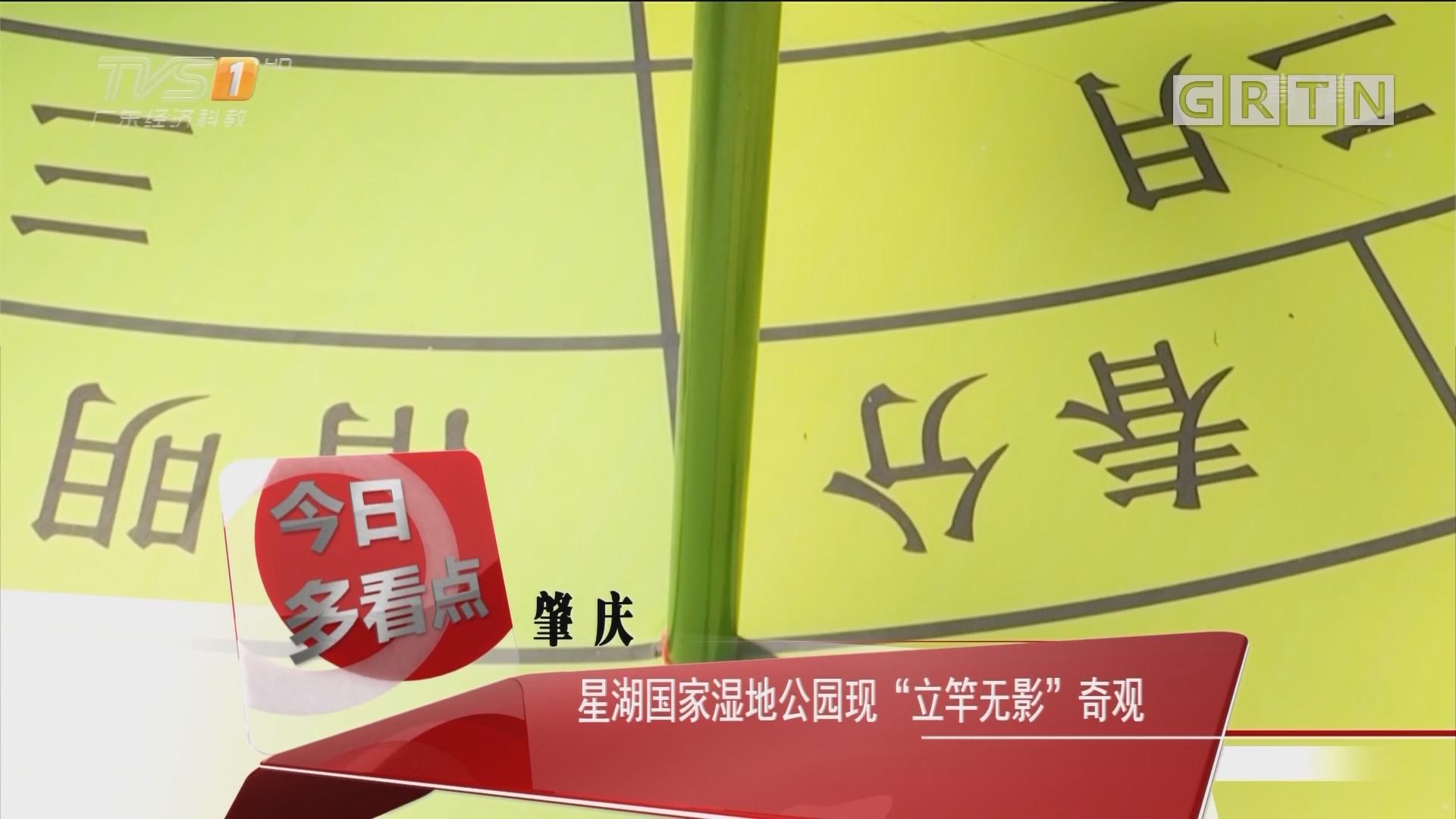 """肇庆:星湖国家湿地公园现""""立竿无影""""奇观"""