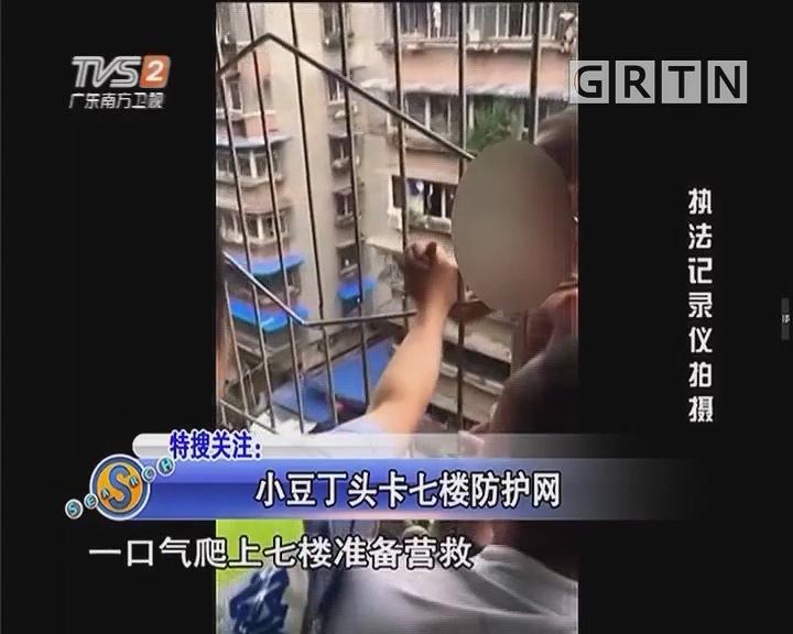 特搜关注:小豆丁头卡七楼防护网