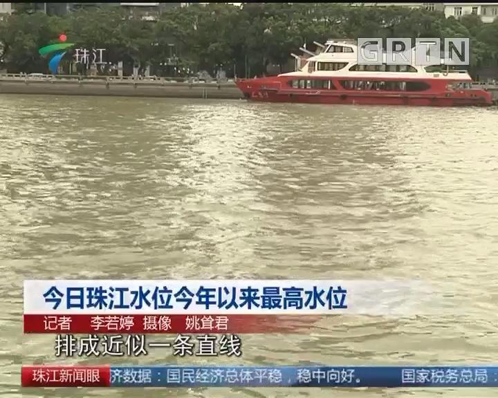 今日珠江水位今年以来最高水位