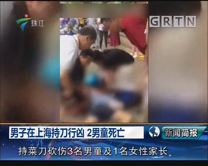 男子在上海持刀行凶 2男童死亡