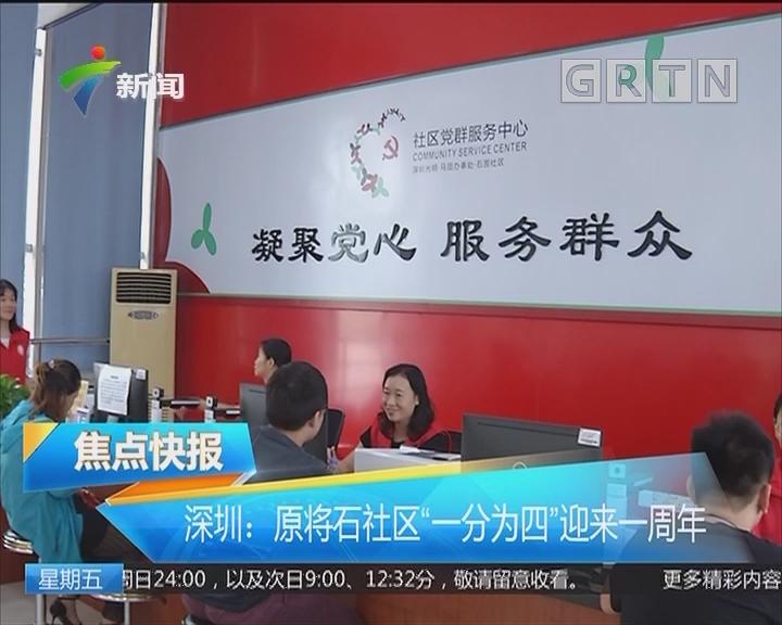 """深圳:原将石社区""""一分为四""""迎来一周年"""
