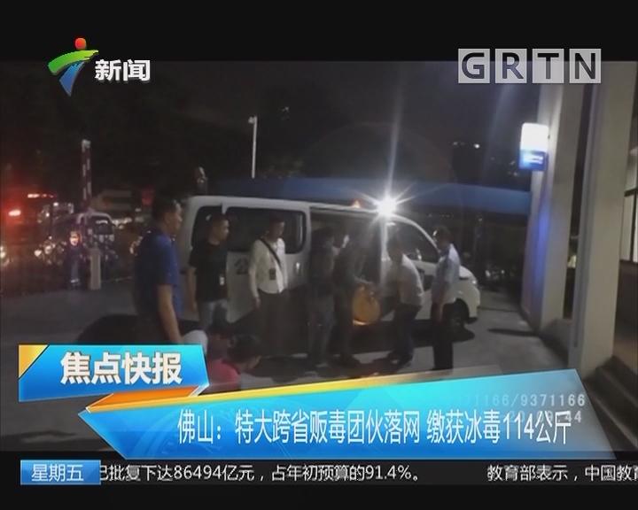 佛山:特大跨省贩毒团伙落网 缴获冰毒114公斤