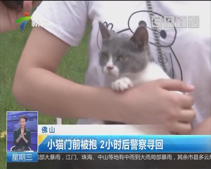 佛山:小猫门前被抱 2小时后警察寻回
