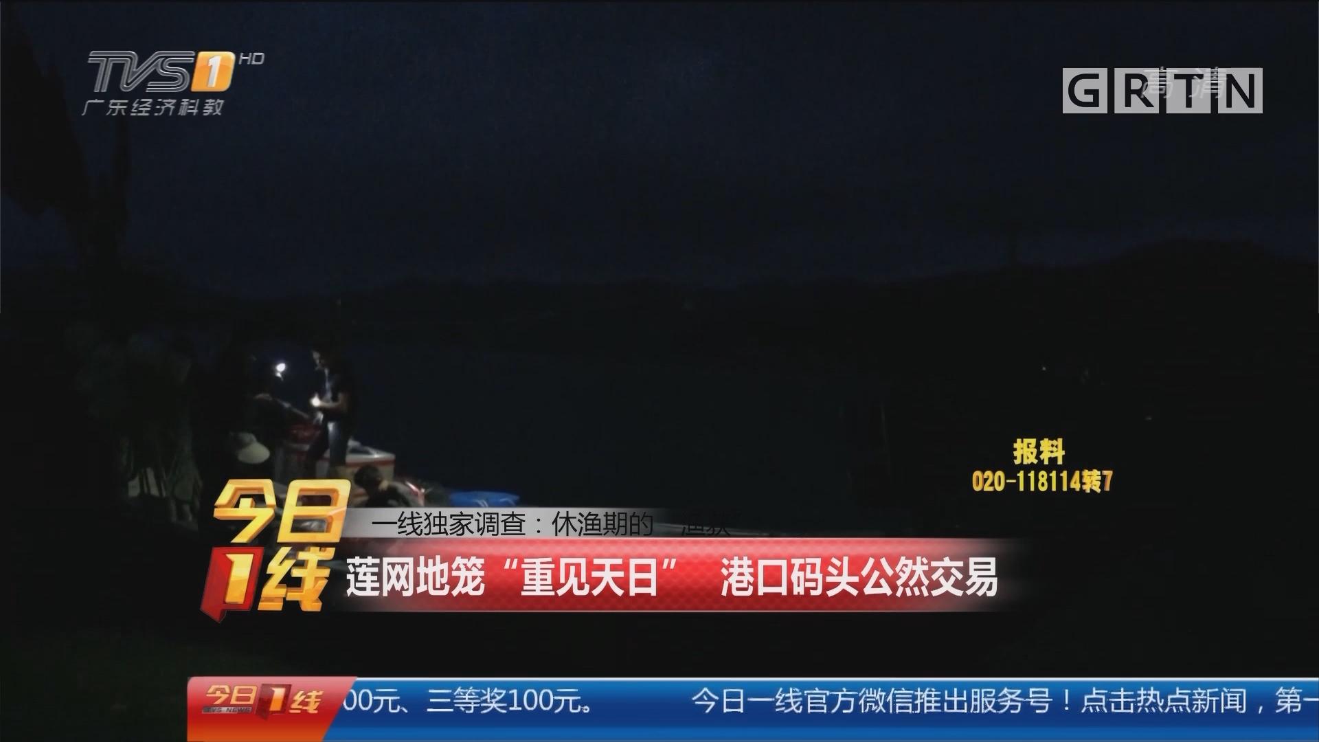 """一线独家调查:休渔期的""""渔获"""" 莲网地笼""""重见天日"""" 港口码头公然交易"""