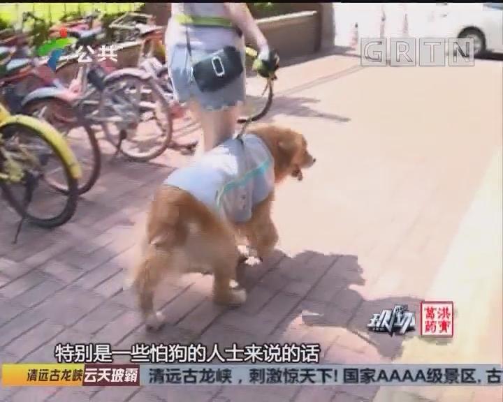 受小狗惊吓摔倒受伤 女子获赔近八万元