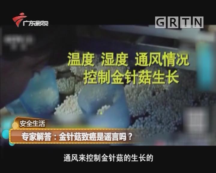 专家解答:金针菇致癌是谣言吗?