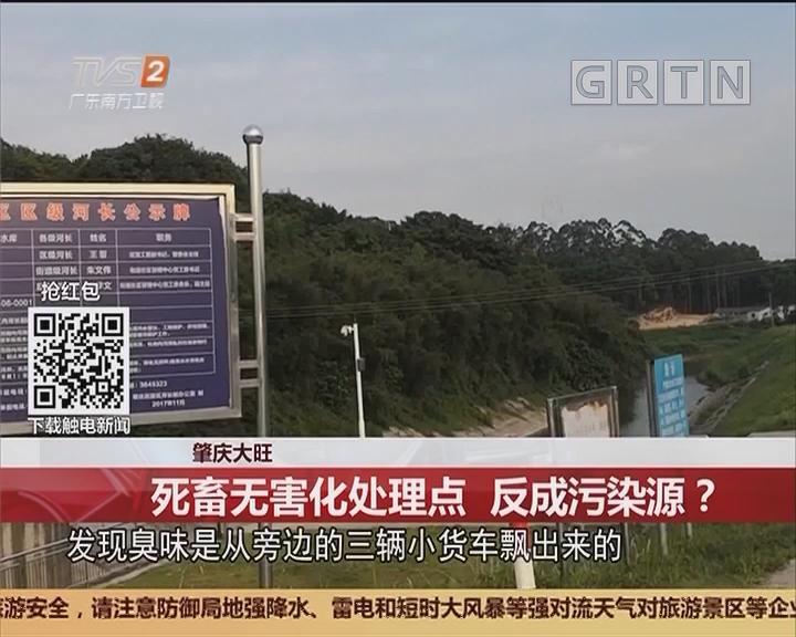 肇庆大旺:死畜无害化处理点 反成污染源?